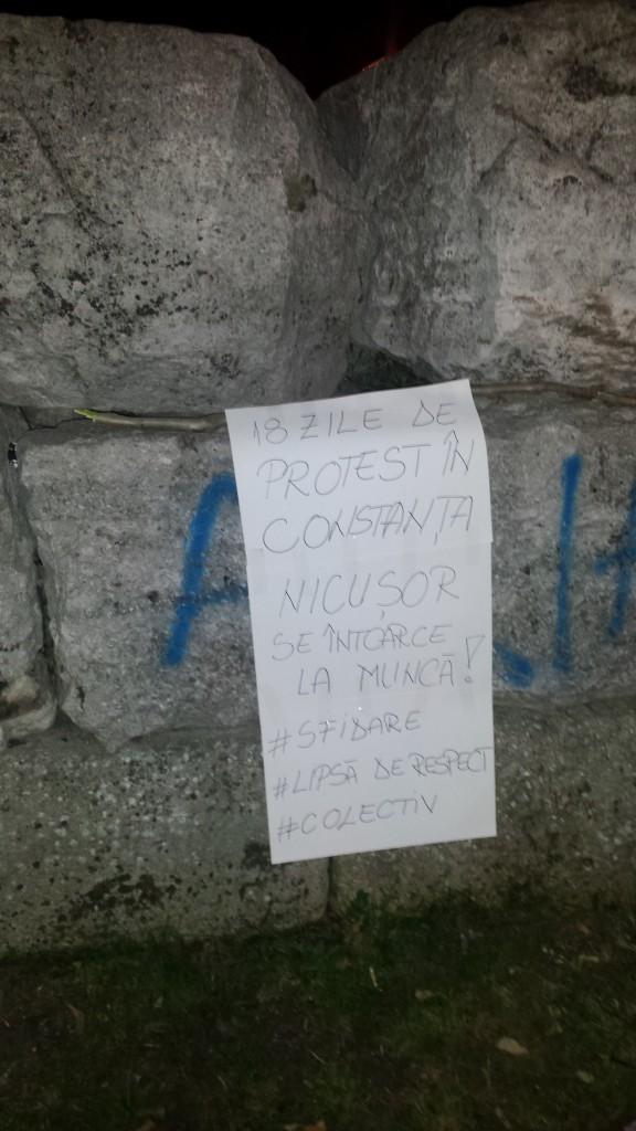 nicusor constantinescu protest