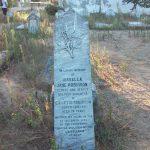 Cimitirul maritim Sulina